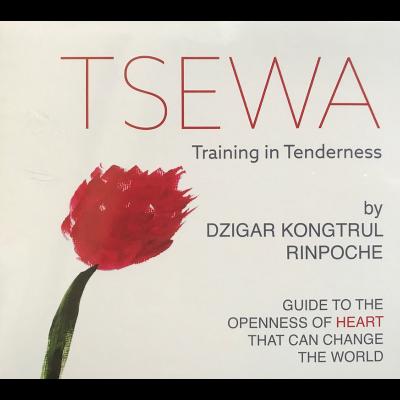 Audio-Tsewa