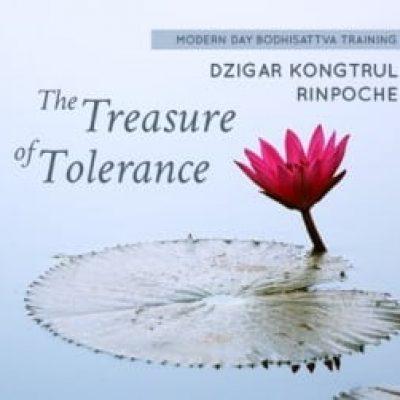 treasure-of-tolerance